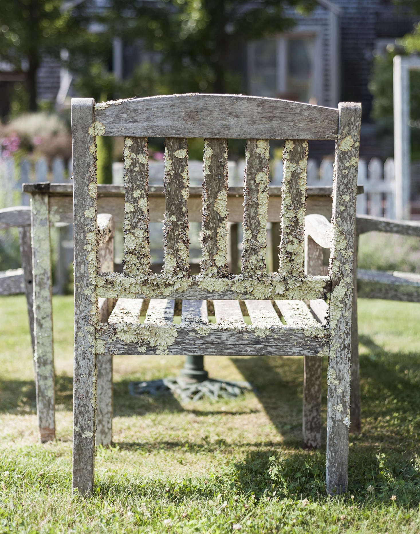 A well-loved set of outdoor wooden furniture has developed a mossy patina over time on Cape Cod. Photograph by Matthew Williams for Gardenista.