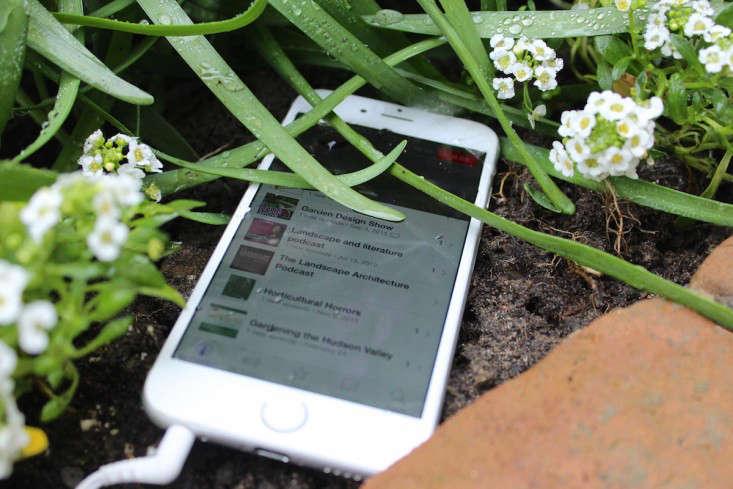 podcasts-fixed-gardens-gardening-gardenista-iphone-IMG_2837