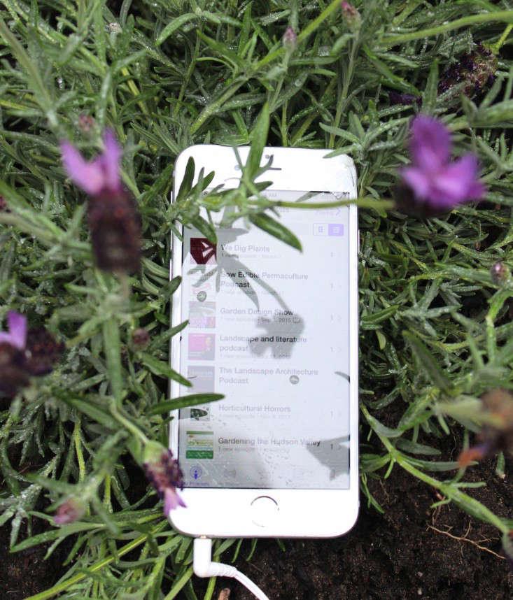 podcasts-gardens-gardening-gardenista-iphone-IMG_2852