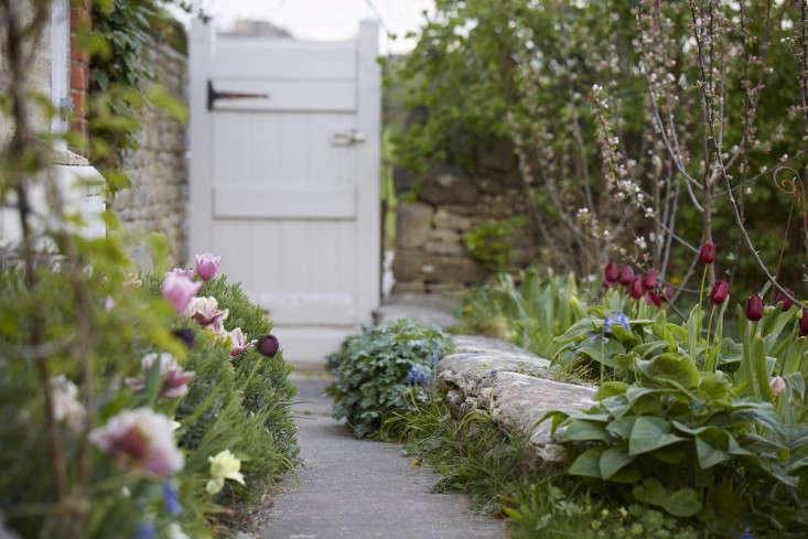 tulips-path-garden-gate-britt-willoughby-dyer-gardenista