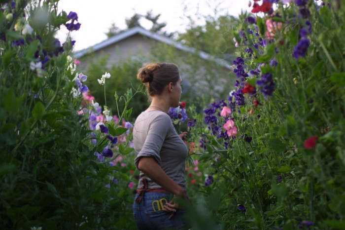 "Erin Benzakein, of Floret Farm, surrounded by sweet peas. ""You'll get a lot more flowers if you deadhead through the whole season,"" she says. Photograph via Floret Farm, from Ask the Expert: 7 Tips to Grow Cut Flowers in a Tiny Garden, from Floret Farm."