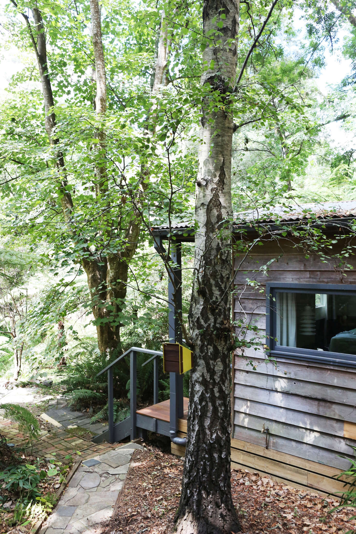 The guest house was built in the early th century and was recently remodeled by Sarah Trotter of Hearth Studio.Here, a silver birch tree offers residency forwildlife.