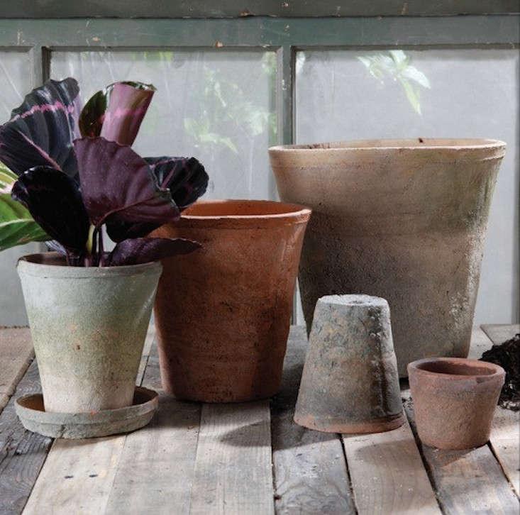 Rustic_Terra_Cotta_Rose_Pot_gardenista