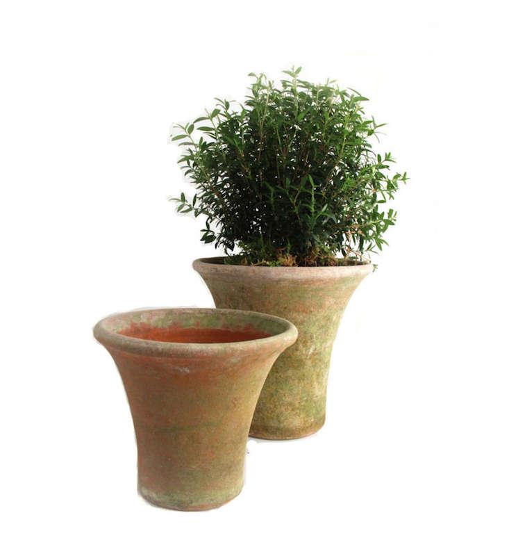 aged-mossy-english-terracotta-pot-gardenista