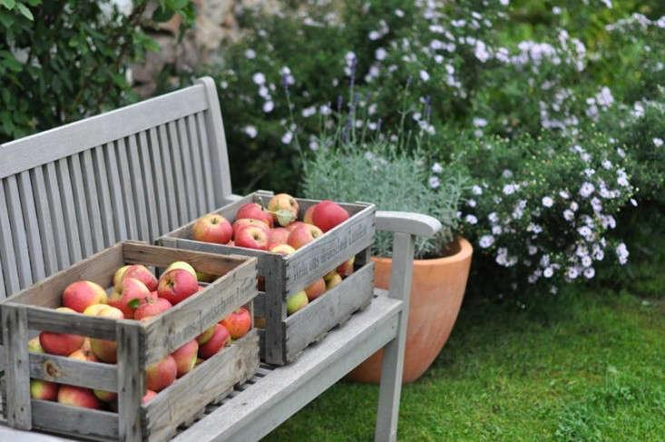 appe_harvest_garden_bench_gardenista