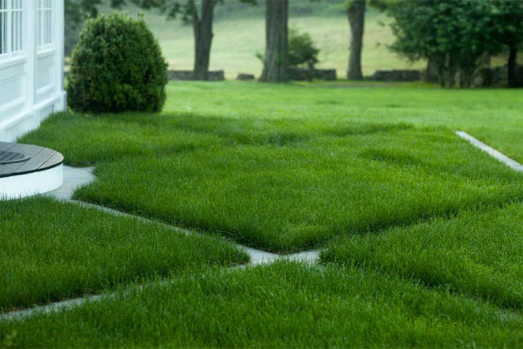 bluestone-grass-pattern-landscape-janice-parker-gardenista