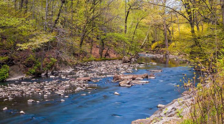 bronx river_vincent mounier