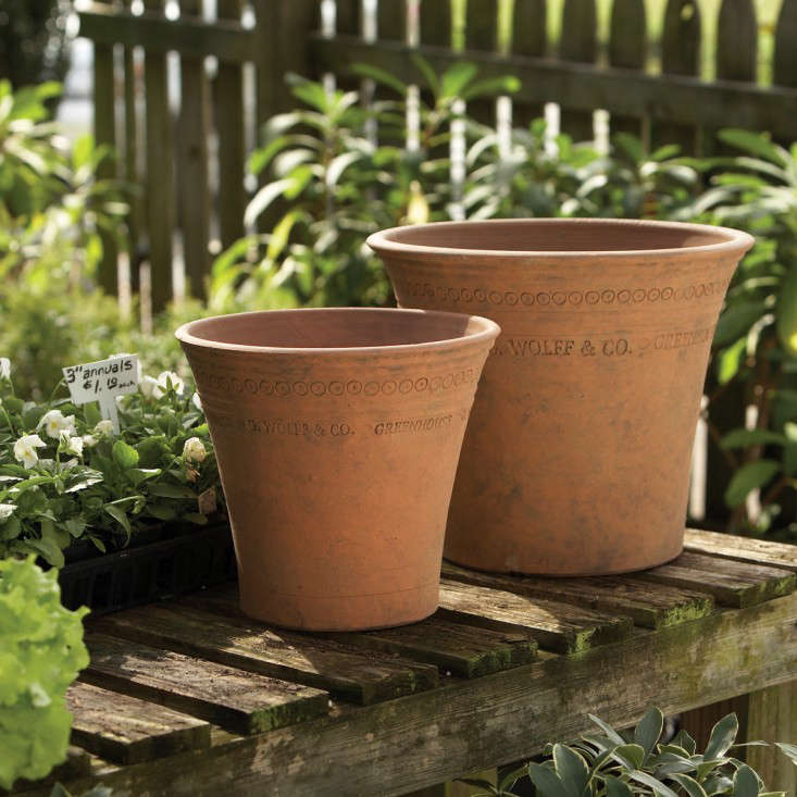 guy-wolff-moss-terracotta-pots-gardenista