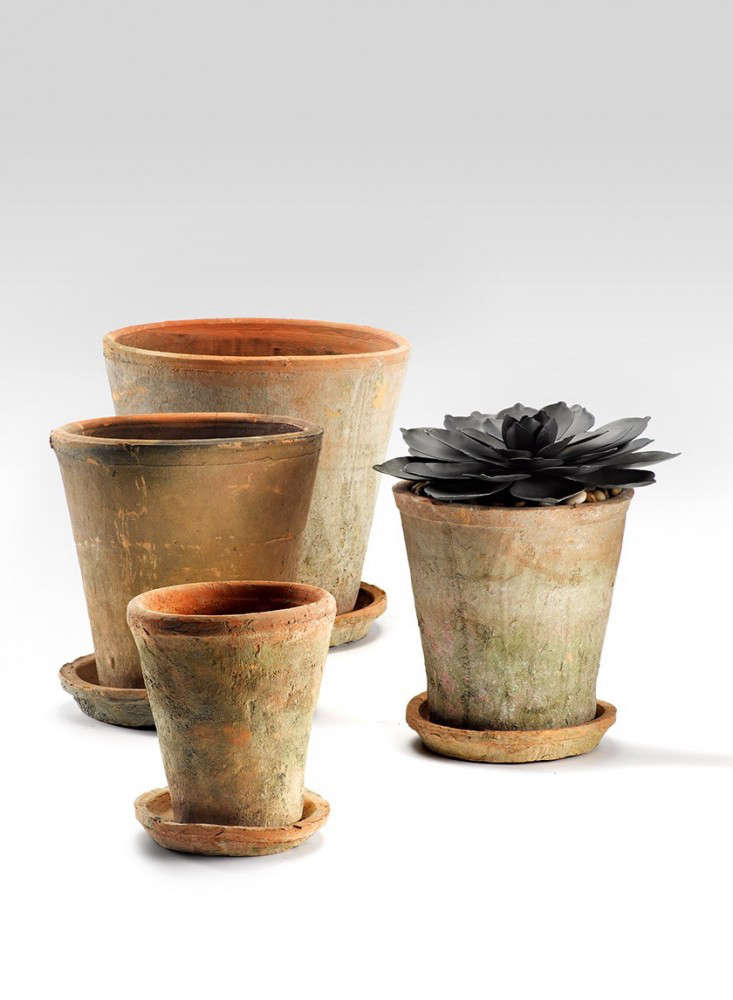 moss-redstone-rose-clay-pot-saucer_gardenista05-rm-ms_mag