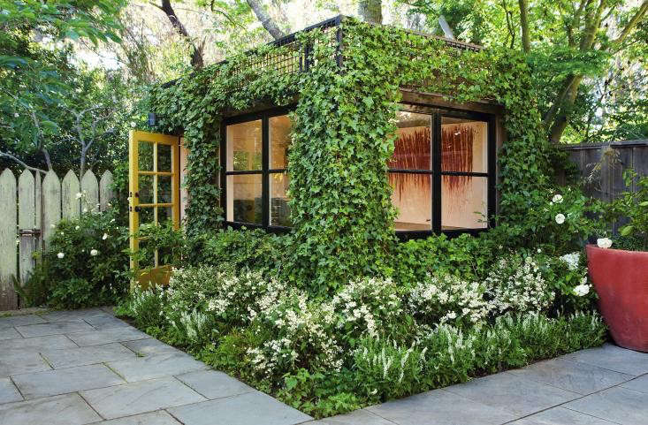 "Photograph courtesy of Scott Lewis Landscape Architecture. Around the perimeter of a San Francisco artist's studio, landscape architect Scott Lewis covered a metal trellis with English ivy and planted white dwarf deutzia (Deutzia gracilus 'Nikko') at the base. ""It's typically an old-fashioned plant, a deciduous shrub that blooms in late spring and early summer,"" says Lewis. For more of this garden, see Landscape Architect Visit: A Green and White Oasis in San Francisco."