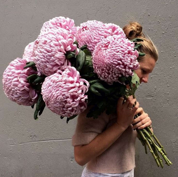 Katie_Marx_flowers_Gardenista_current_obsessions