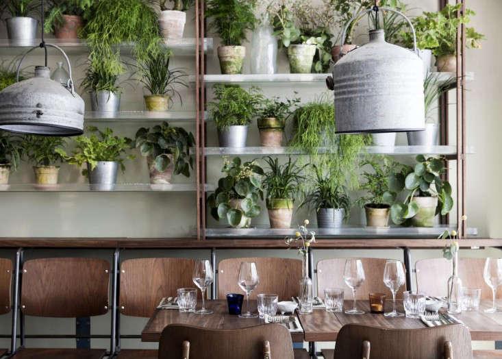 cofoco-growth-restaurant-copenhagen-gardenista-6