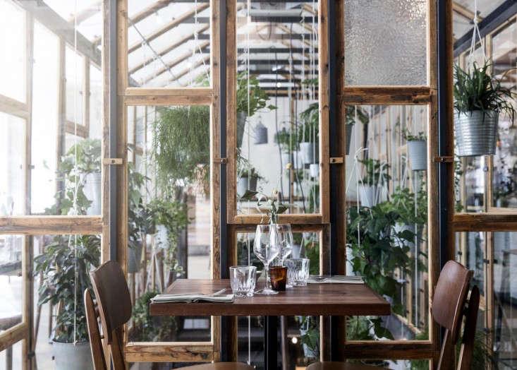 cofoco-growth-restaurant-copenhagen-gardenista