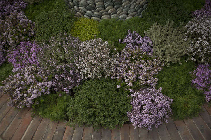 jekka-mcvicar-chelsea-5-photo-Jim-Powell-gardenista