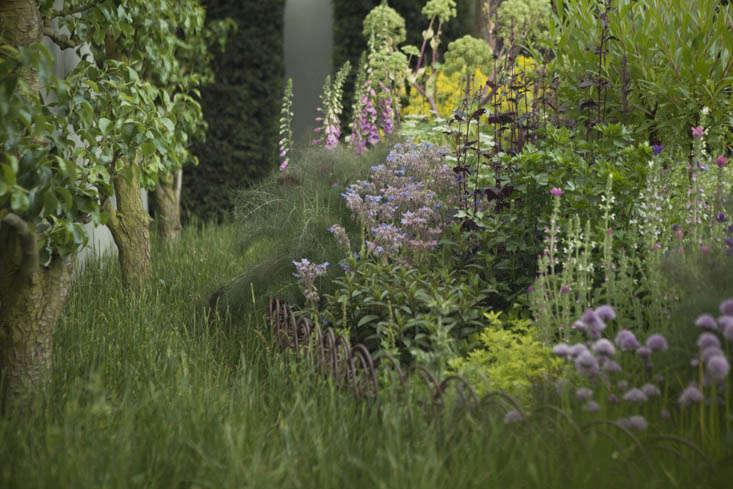 jekka-mcvicar-chelsea-7-photo-Jim-Powell-gardenista