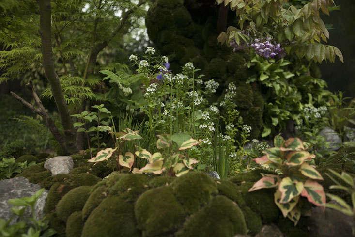 kazuyuki-ishihara-chelsea-10-photo-jim-powell-gardenista