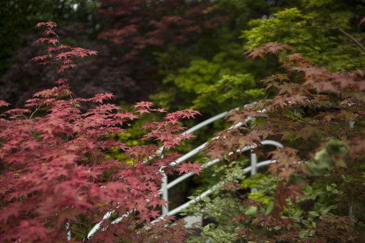 kazuyuki-ishihara-chelsea-9-photo-jim-powell-gardenista