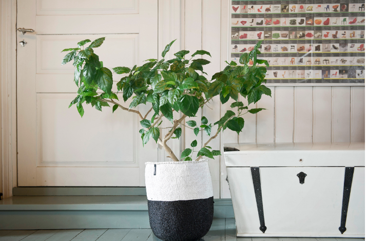 kiondo-plant-basket-black-white-gardenista