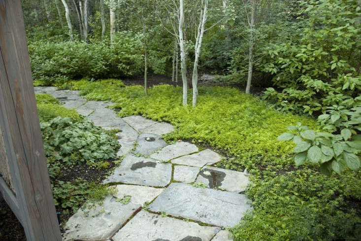 outdoor-shower-path-idaho-ben-young-gardenista