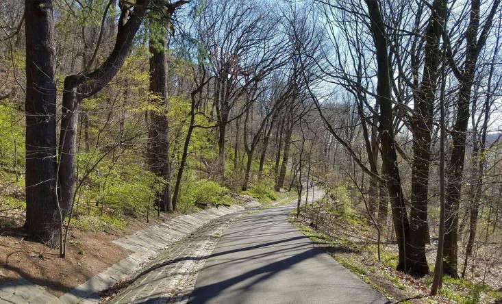 path2_marieviljoen_gardenista