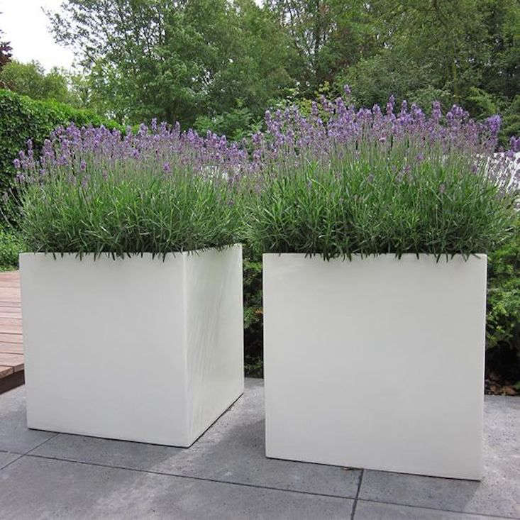 white-lightweight-cube-planter-gardenista