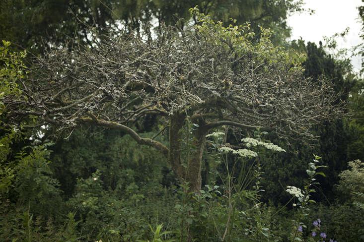 wilderness house-4-jim-powell-photo-gardenista