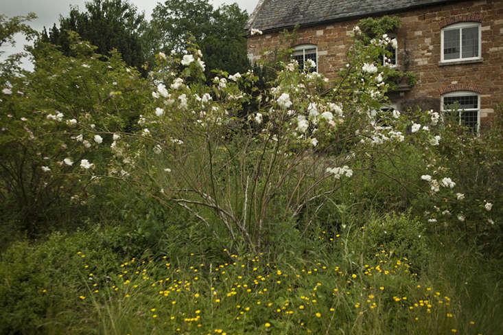 wilderness house-5-jim-powell-photo-gardenista