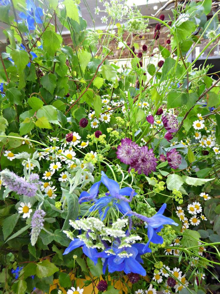 2-Arrangement-detail-jamjar-gardenista