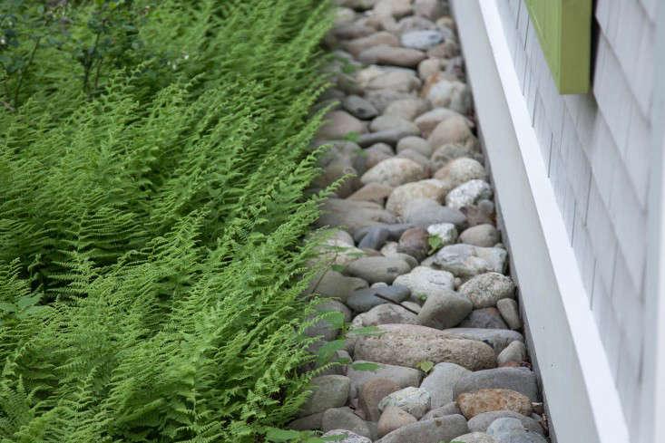 20-Matthew-Cunningham-Landscape-Design-Clamshell-Alley-drainage-rock-ferns-gardenista