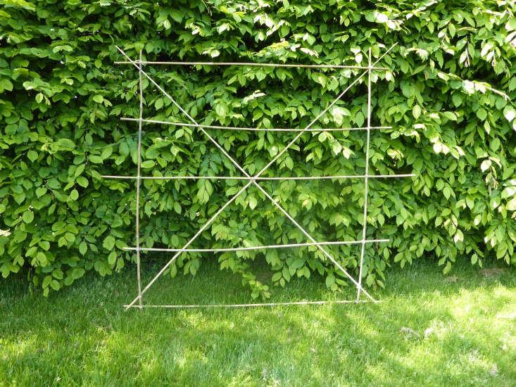 2_bamboo_frame_Gardenista