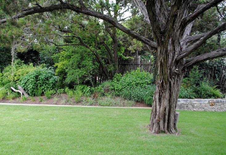 BEE-CAVE-Tait-Moring-garden-Gardenista-7