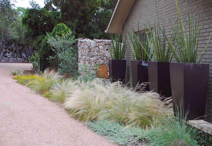 BEE-CAVE-Tait-Moring-garden-driveway-garage-Gardenista-9.5