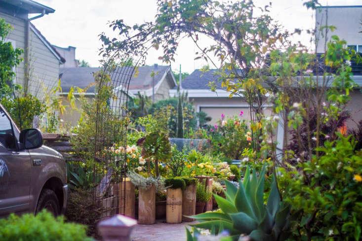 Garden-Apothecary-Half-Moon-Bay-California-Container-Garden-Driveway-Gardenista-APR2016-2-31