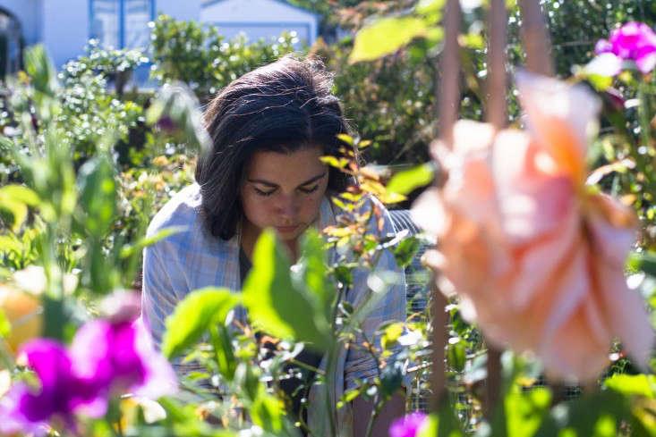 Garden-Apothecary-Half-Moon-Bay-California-Container-Garden-Driveway-Gardenista-APR2016-28