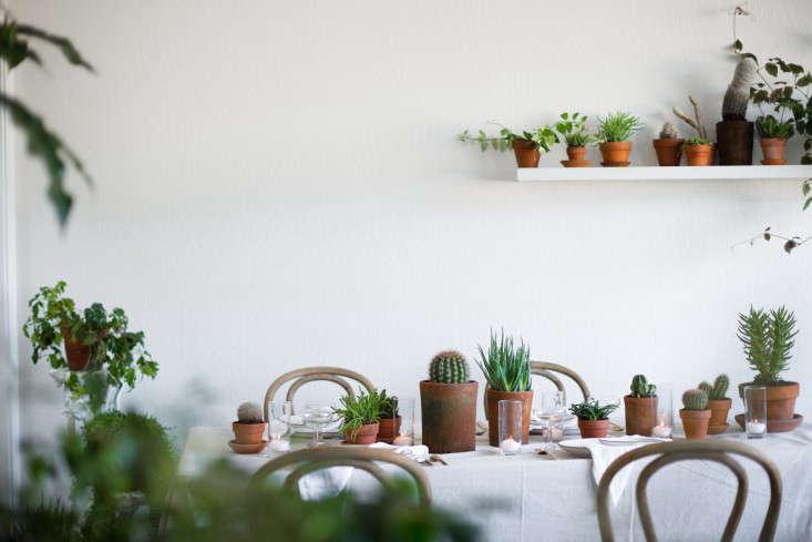 PlantLibrary-142-shelf-houseplants-terra-cotta-dining-room-gardenista