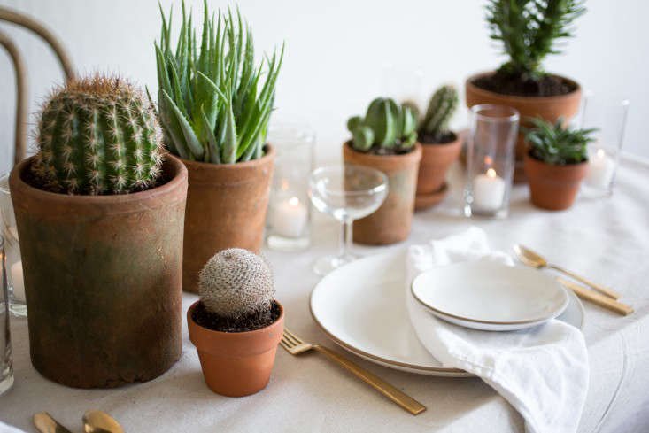 PlantLibrary-89-napkins-candles-houseplants-terra-cotta-dining-room-gardenista