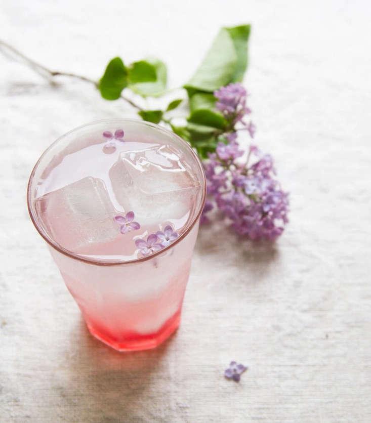 Rhubarb_lilac_spritzer_erin_boyle_gardenista_obsessions