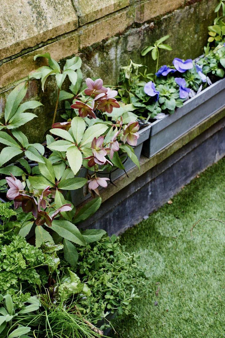 artificial grass London balcony garden