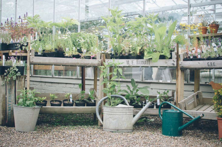 edinburgh-scotland-secret-herb-garden-jen-chillingsworth-gardenista-10
