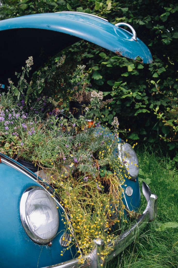 edinburgh-scotland-secret-herb-garden-jen-chillingsworth-gardenista-2