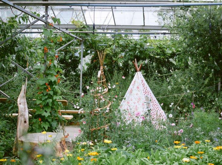edinburgh-scotland-secret-herb-garden-jen-chillingsworth-gardenista-3 (2)