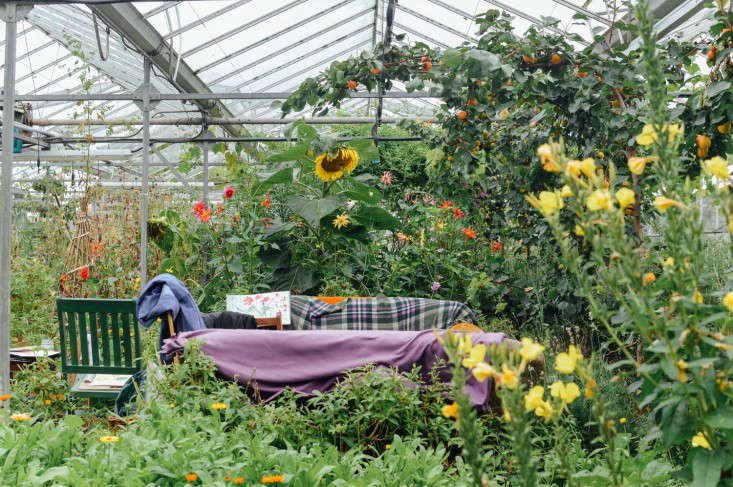 edinburgh-scotland-secret-herb-garden-jen-chillingsworth-gardenista-6