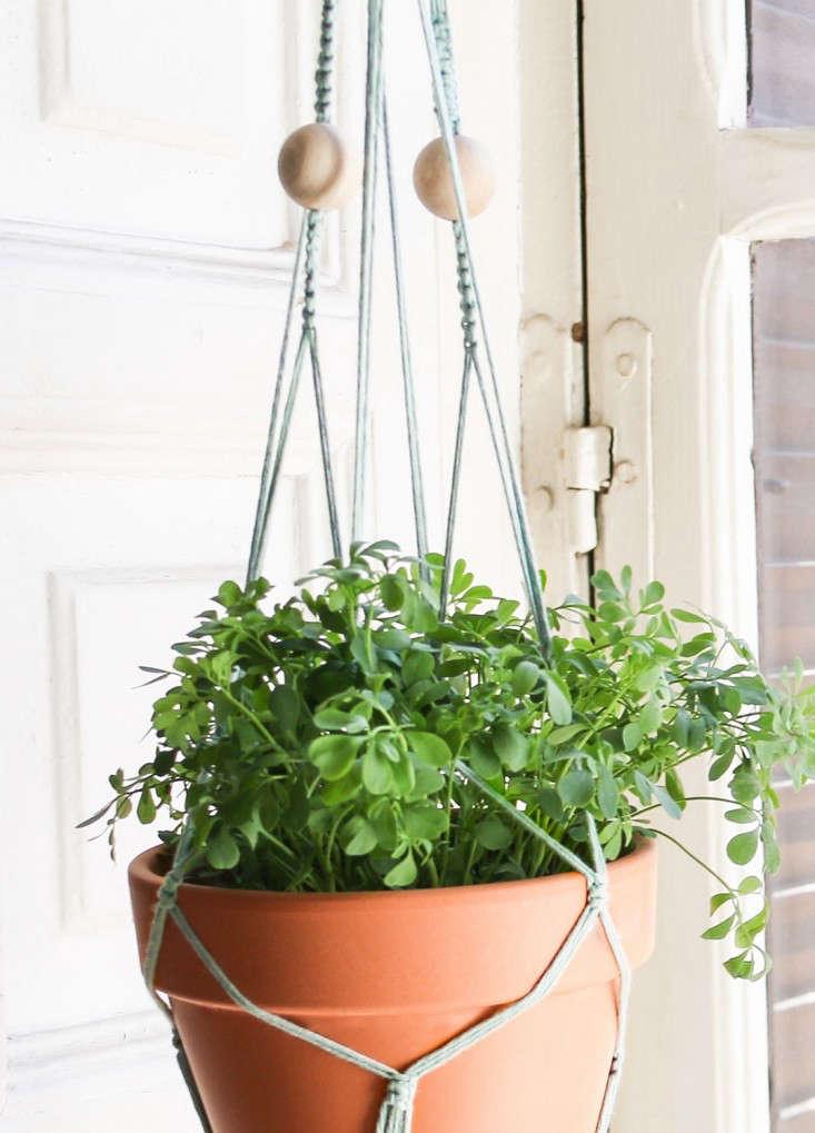 macrame-kit-coton-agave-plant-hanger-gardenista