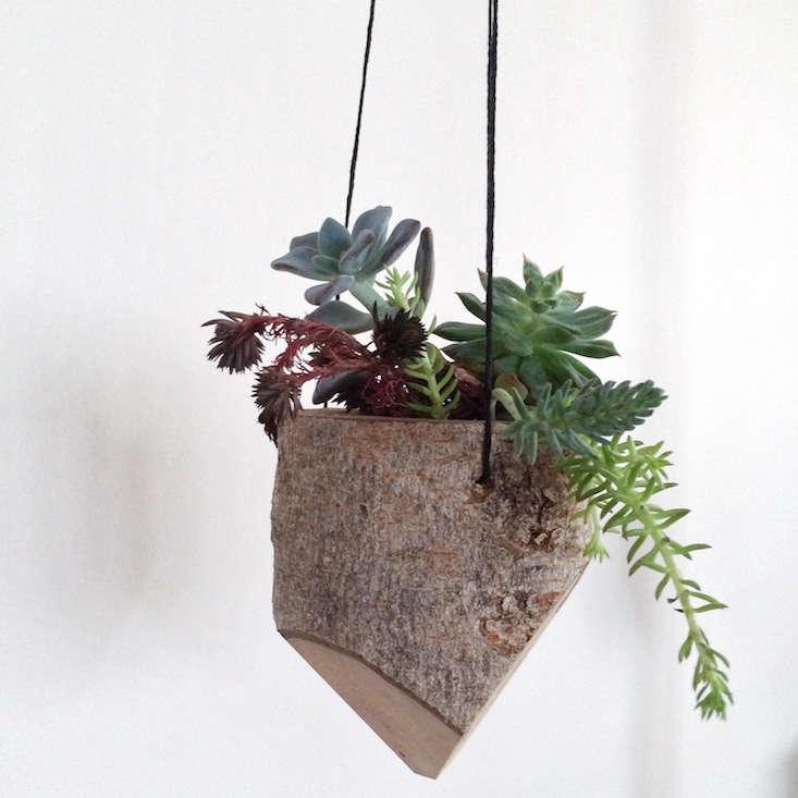 wee+forest+planter_vestige_gardenista_obsessions