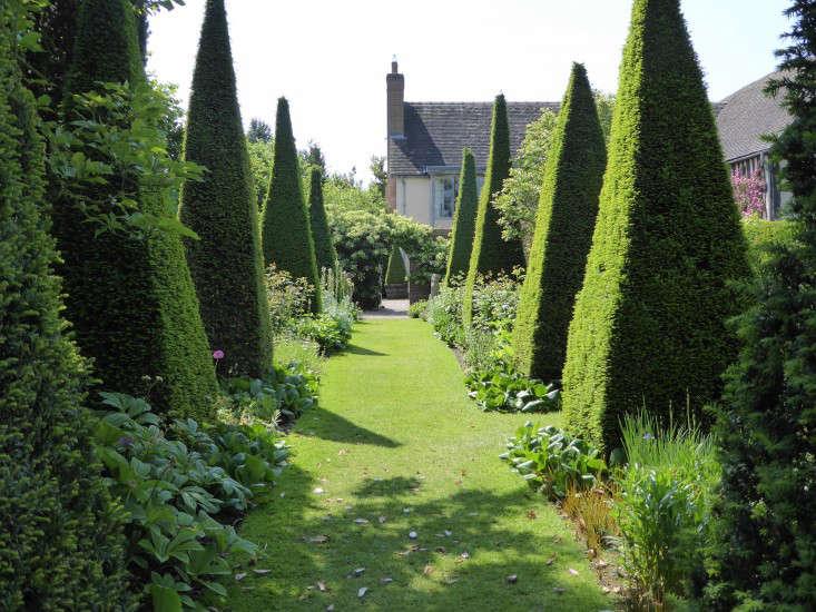wollerton-garden-yew-spires-gardenista
