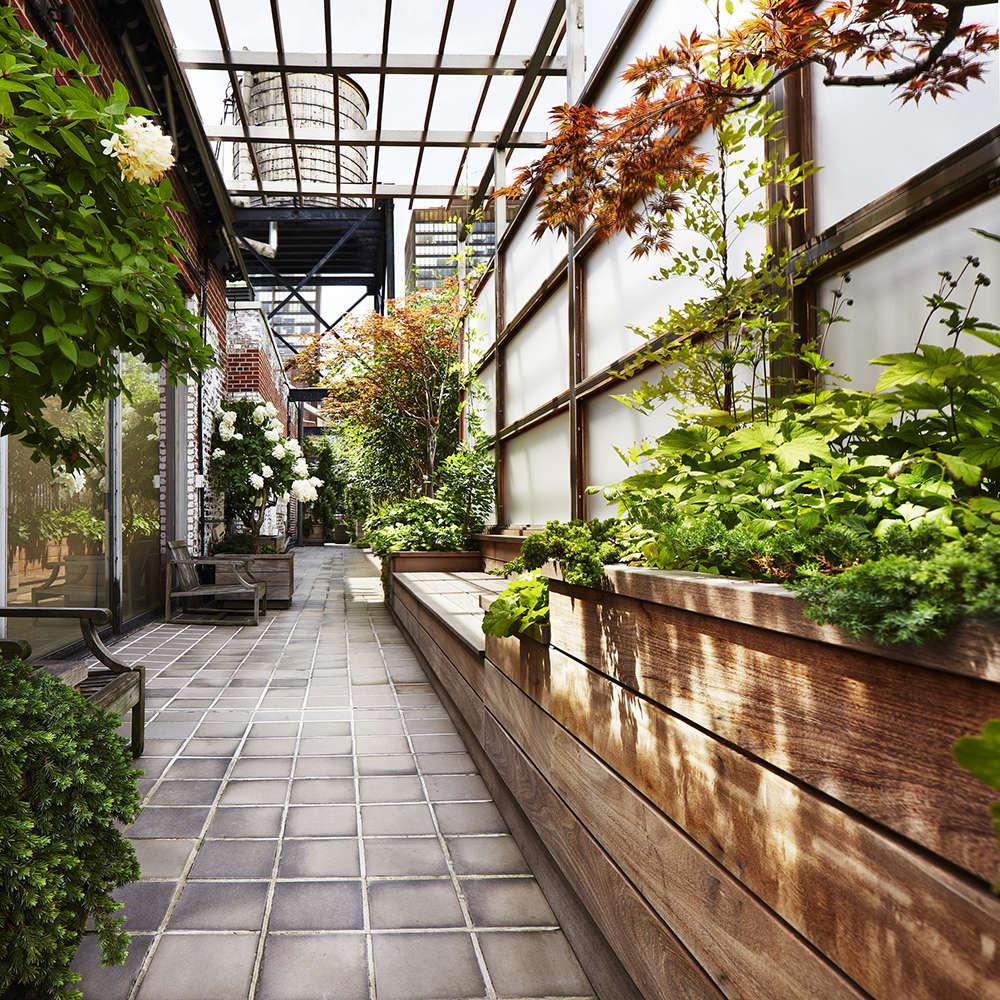 Kim-Hoyt-Garden-Privacy-Gardenista-2
