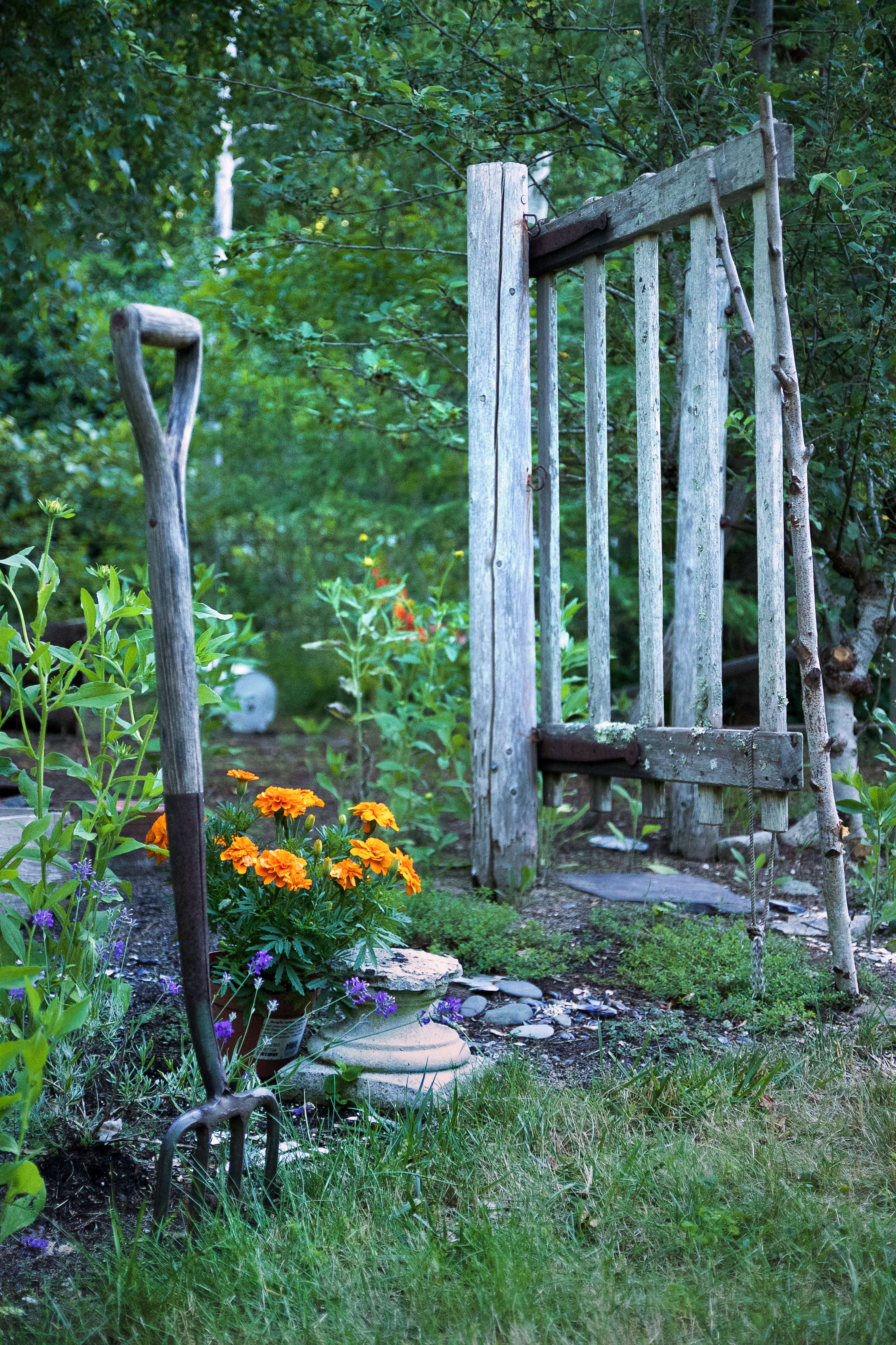 A garden gate leads to the herb patch.