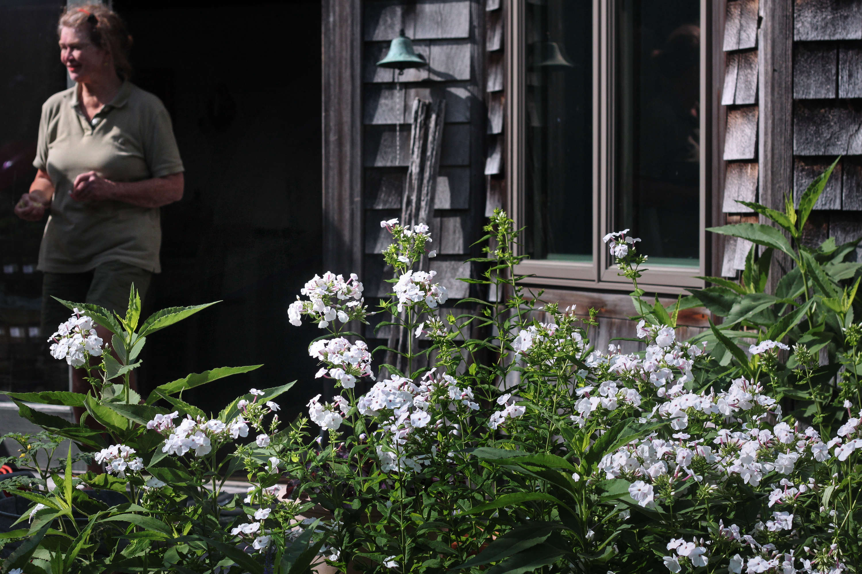 Marnie among the white phlox that borders her kitchen windows in August.