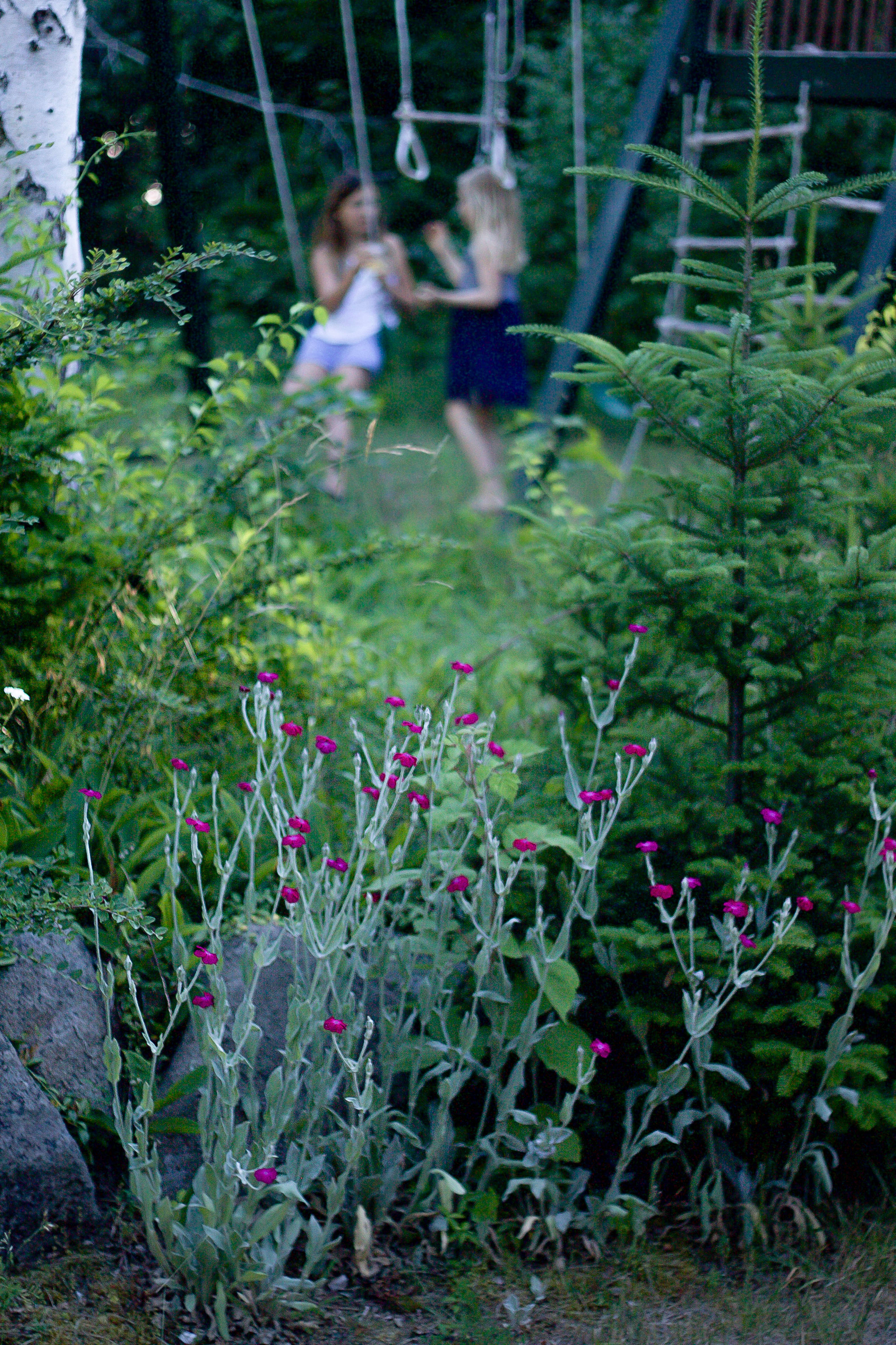 Marnie&#8\2\17;s grandchildren, and my son and daughter, flit around the garden like faeries.