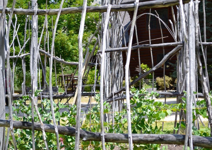 Montana_twig_fence_Stacey Lindsay_Gardenista_obsessions